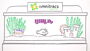 Omnitracs Sylectus TMS Overview