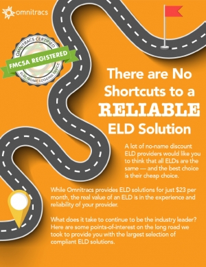 thumbnail image for what it really takes to make an eld infographic