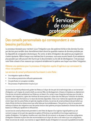 professional services brochure thumb french