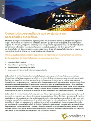professional services brochure thumb spanish