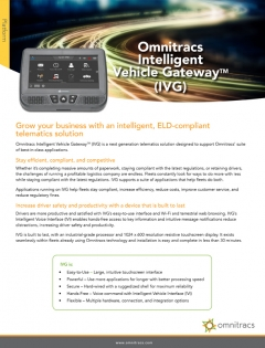 thumbnail image for ivg brochure brochure