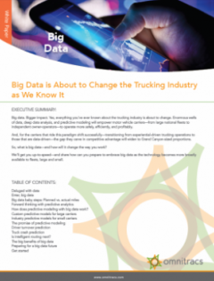 thumbnail image for big data whitepaper