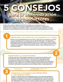 5 tips for driver management infographic thumb spanish