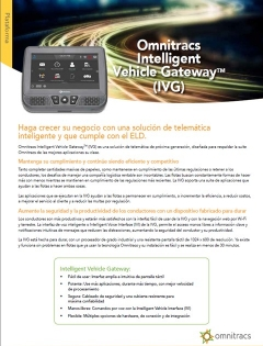 ivg brochure thumb spanish